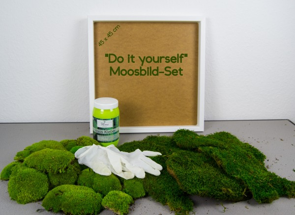 Moosbild DIY Set